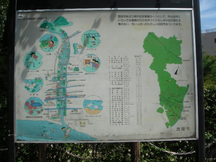 夙川散策2 (7)