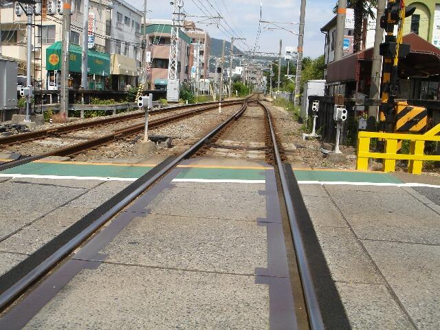 夙川散策5 (5)