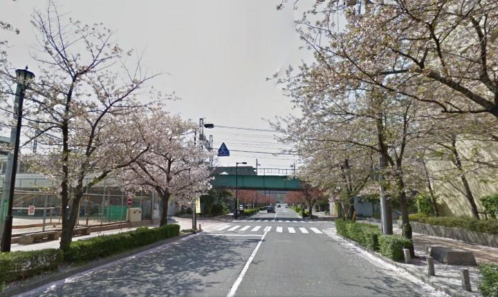 阪神橋.bmp
